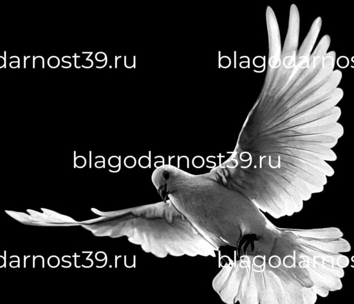 Гравировка: голубь с распростертыми крыльями